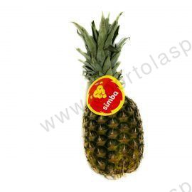 ananas_pineapple_costarica