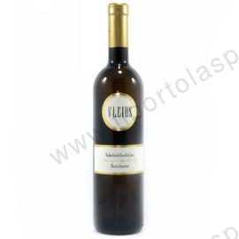 vino_verdicchio_doc-Dei_Castelli_di_Jesi_Vlejus_lt_0,75-(2)