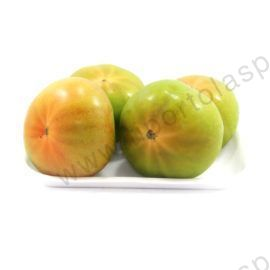 pomodoro_verde_tondo_cod_972_kg_1,3-(3)