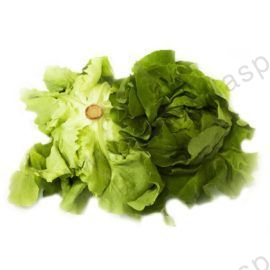 insalata-trocadero